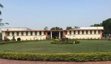 Regional museum Bhubaneswar