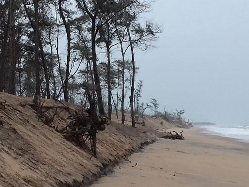 gahirmatha beach