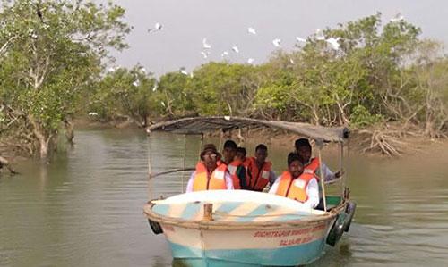 Boat at bichitrapur nature camp