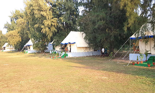 Tent house at Mangalajodi nature camp