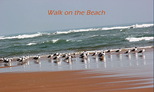 walk on the beach