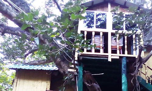 Tree house at Giant Squirrel Nature Camp