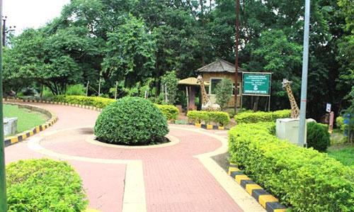 Sanaghagara Nature Camp