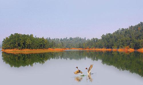Sarafgarh Nature Camp