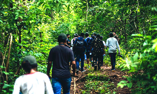 walk in forest- Satkosia Sands Resort