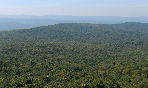 Similipal forest overview
