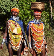 Exclusive Odisha Tribal Tour