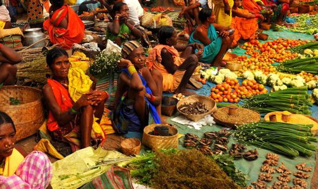 Tribal Tour In Odisha Gallery 3