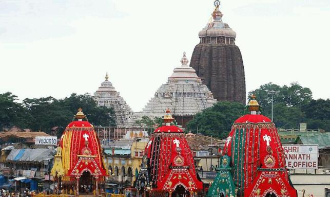Puri Rath Yatra Tour Gallery 3