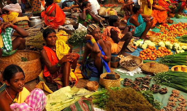 Exclusive Odisha Tribal Tour Gallery 3