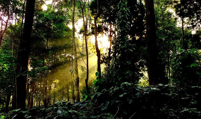 Monsoon Retreat At Koraput Valley Tour Gallery 2