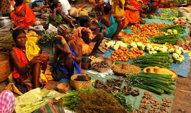 Odisha Tribal Village Photography Tour Gallery 1
