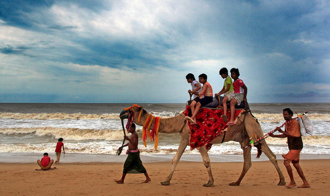 Contrasts Of Odisha Tour Gallery 3