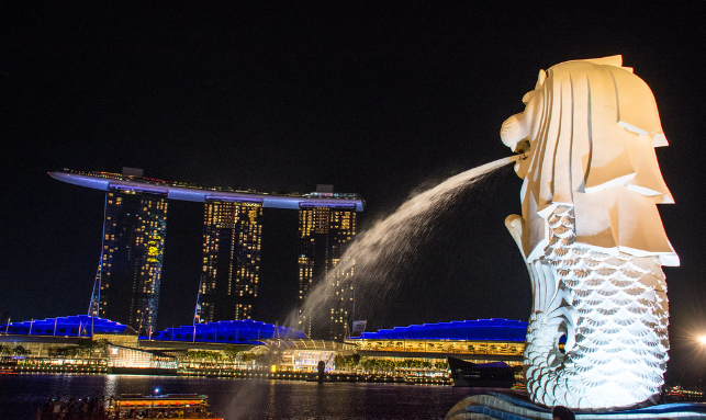 Gateway To The Beauty Of The World - Singapore Gallery 1