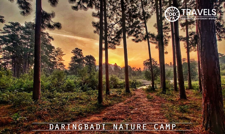 6. Daringbadi Nature Camp