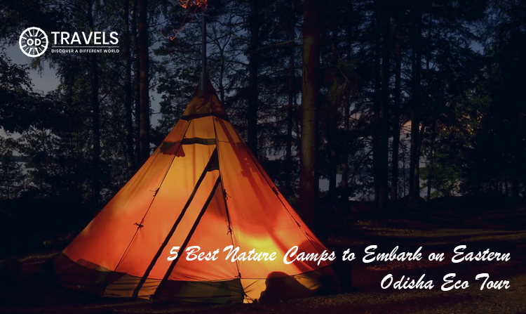 5 Best Nature Camps to Embark on Eastern Odisha Eco Tour