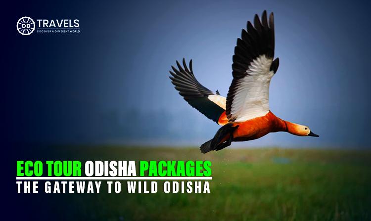 Eco Tour Odisha