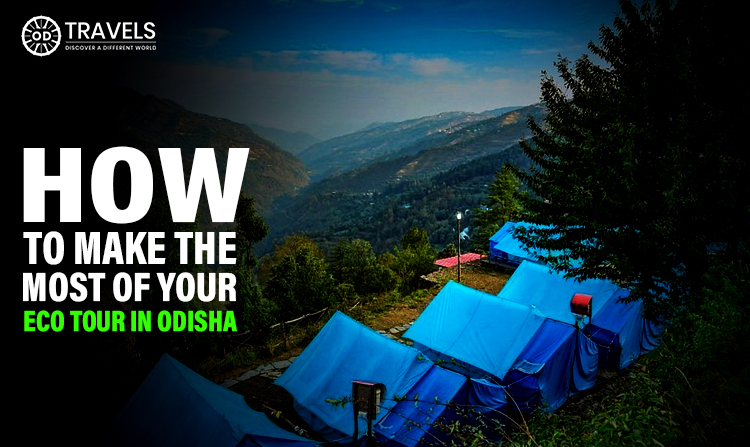 How To Make The Most Of Your Eco Tour In Odisha